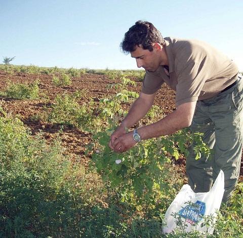 αγροτης (1)
